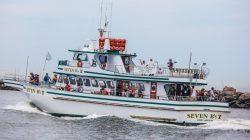 Seven B's Narragansett Fishing Vacation