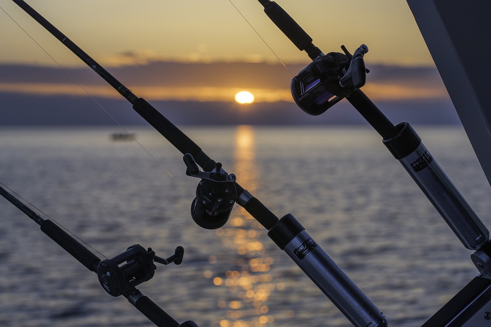 fishing poles in front of the sunset